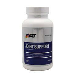 Joint Support by German American Technologies