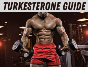The Ultimate Guide to Turkesterone Supplements